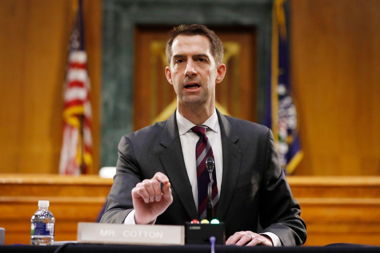 Tom Cotton speaks during a Senate Intelligence Committee hearing