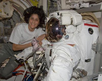Commander Sunita Williams aboard the space station.