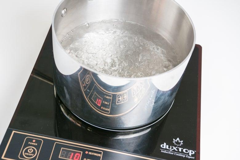 Duxtop 8100MC