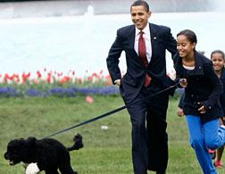 The Obamas and Bo. Click image to expand.