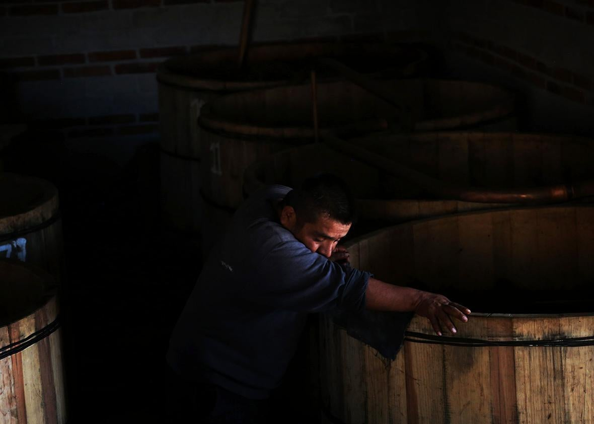 Fortunate Angeles rests against fermenting vats at his palenque in San Juan del Rio, Oaxaca, Mexico.
