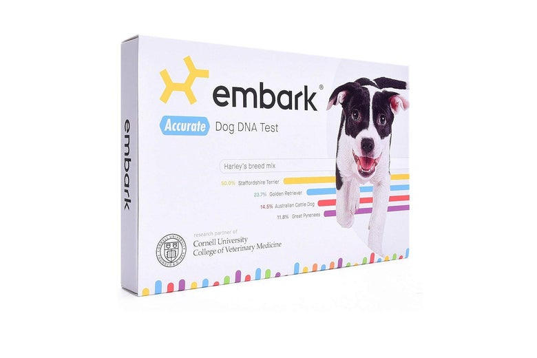 Embark Breed and Health Kit