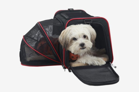 Dog in the Petsfit Expandable Travel Dog Carrier.