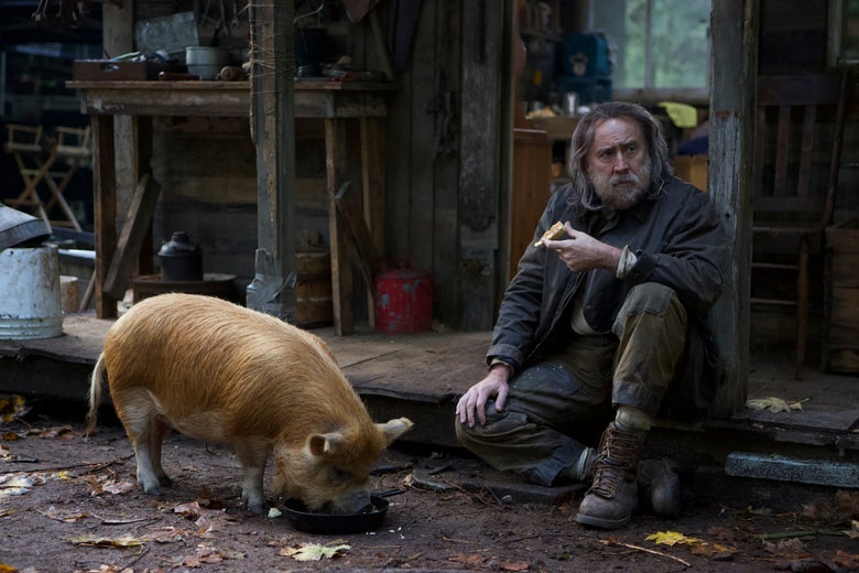 A bearded, rugged Nicolas Cage sits on a dilapidated porch near a fuzzy brown pig