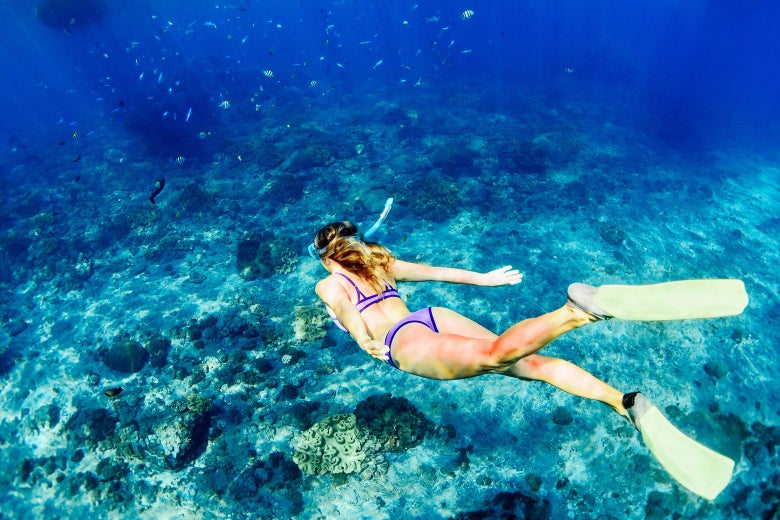 Young woman diving underwater.
