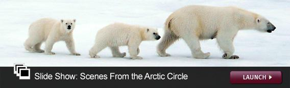 Slide Show: Scenes From the Arctic Circle. Click image to expand.