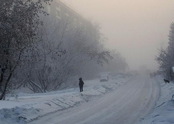 Novosibirsk winter