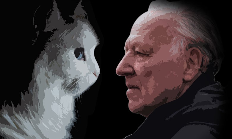 Werner Herzog Narrates a Kooky Cat Video