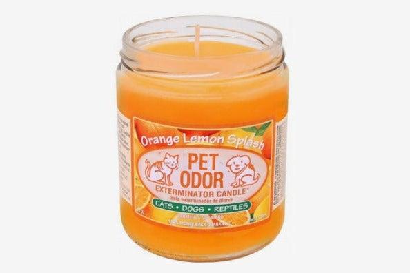 SPECIALTY PET PRODUCTS Pet Odor Exterminator Candle, Orange Lemon Splash
