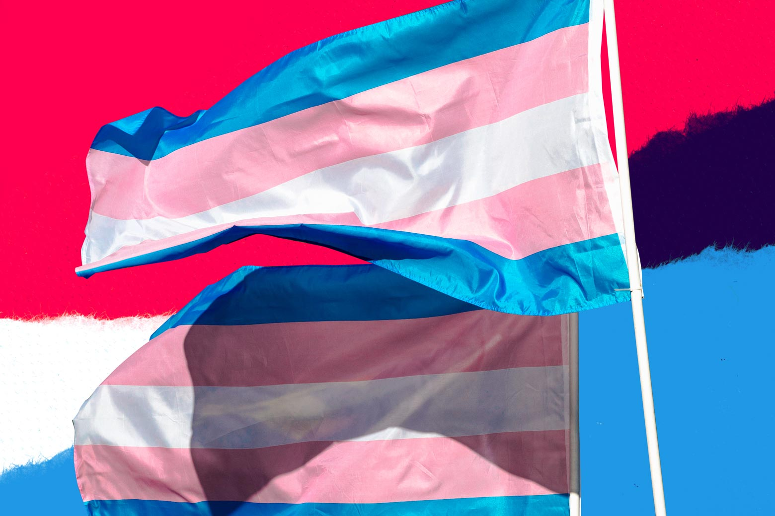 Photo illustration: two transgender flags against a background stylized like the transgender flag. Photo illustration by Slate. Photo by Getty Images.