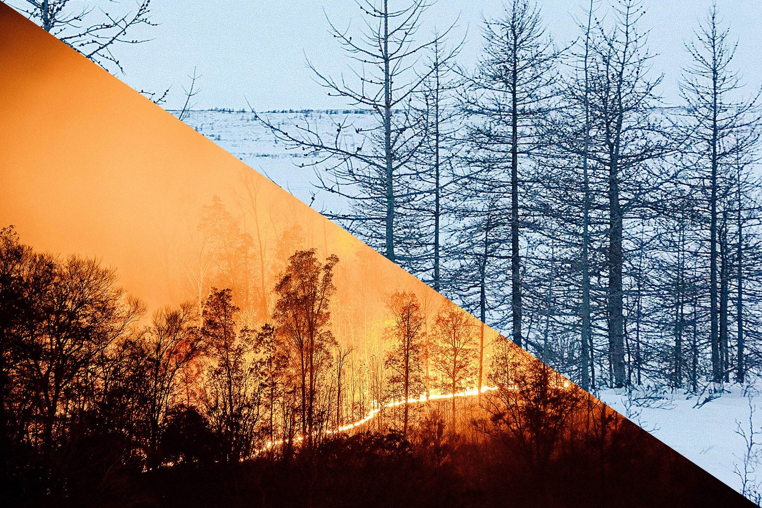 A split-screen of a wildfire and a snowy woods. The forecast app Dark Sky is predicting wild weather in the coming days.
