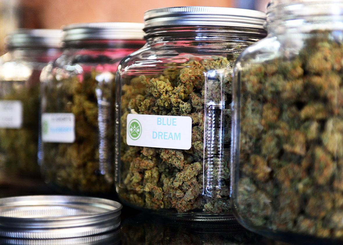 The highly-rated strain of medical marijuana 'Blue Dream' is displayed among others in glass jars at Los Angeles' first-ever cannabis farmer's market at the West Coast Collective medical marijuana dispensary, on the fourth of July, or Independence Day, in Los Angeles, California on July 4, 2014.