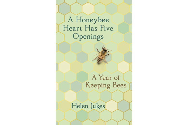 The cover of A Honeybee Heart Has Five Openings.