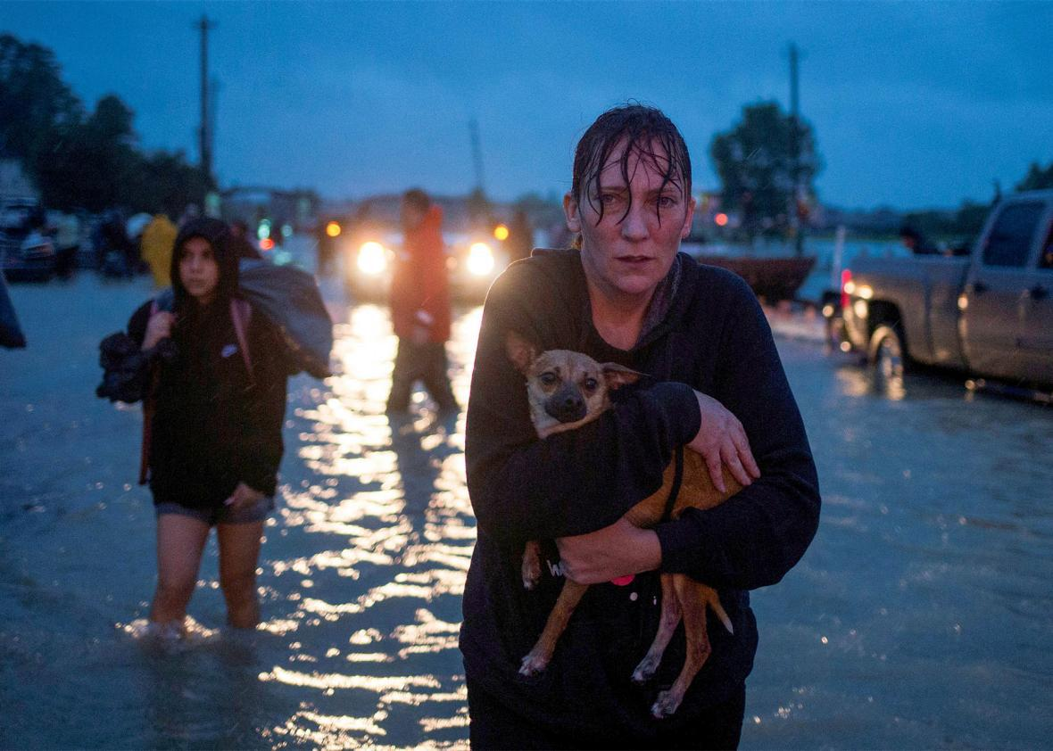 Tropical Storm Harvey Houston