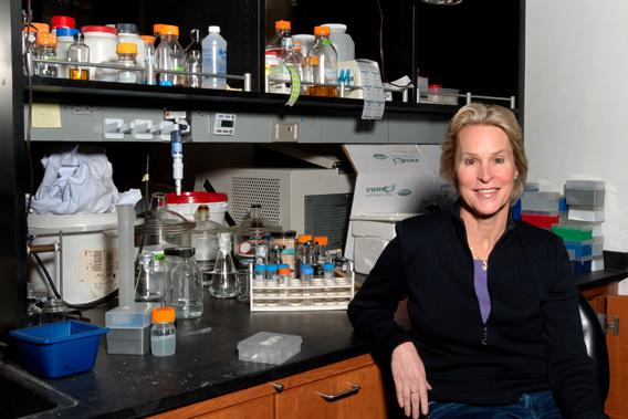 Frances Arnold in her laboratory.