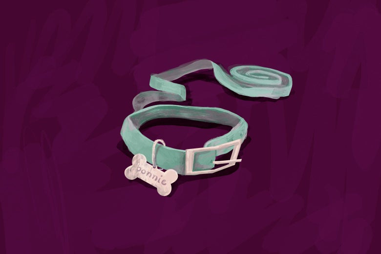 """An illustration of a green leash with a tag that says """"Bonnie"""" on it."""