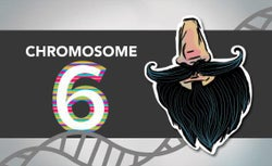 Blogging the Human Genome Entry 13