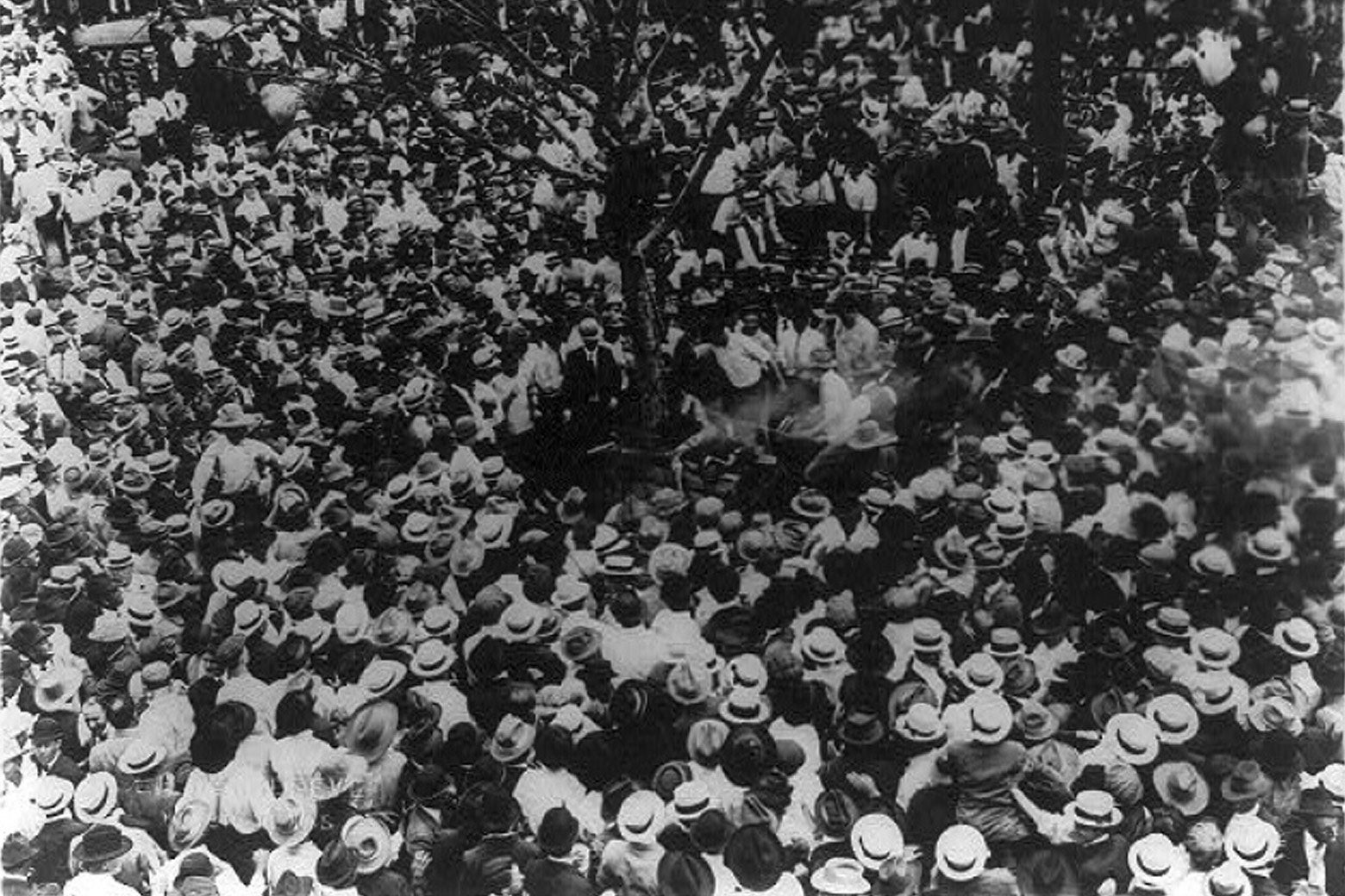 A picture of the mob preparing to lynch Jesse Washington from a tree in front of Waco city hall taken by Fred Gildersleeve on May 15, 1916. Library of Congress