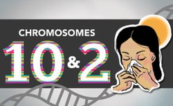 Blogging the Human Genome Entry 16