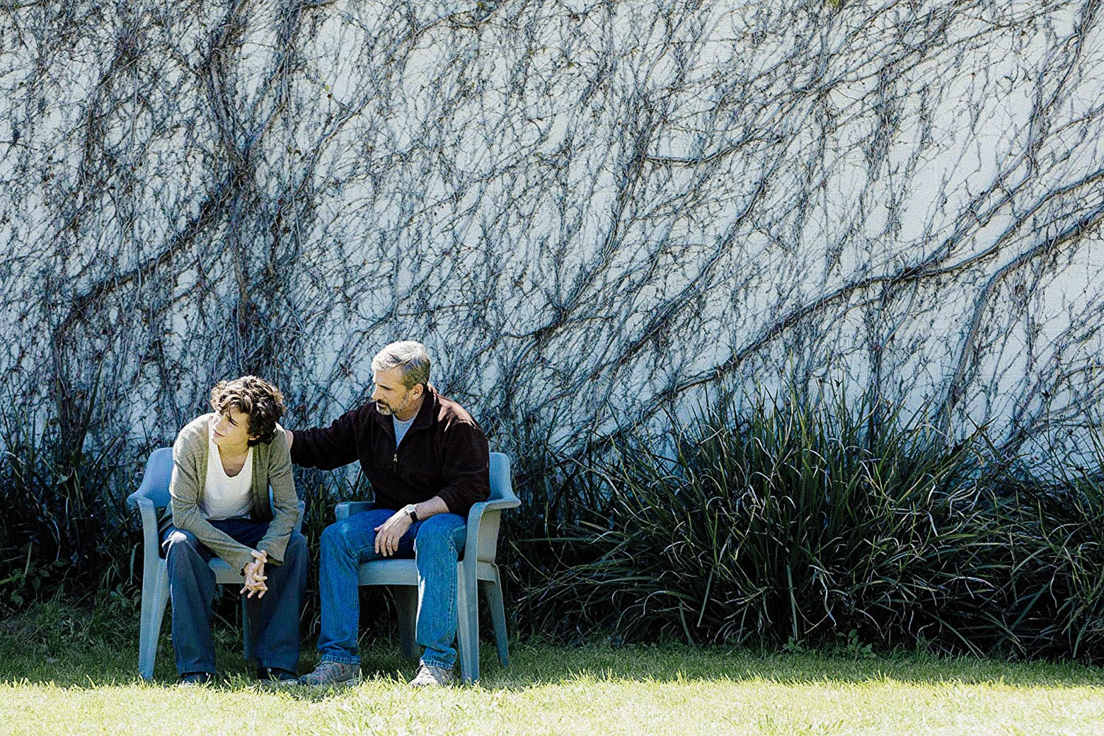 Steve Carell rests his hand on Timothée Chalamet's back in Beautiful Boy.
