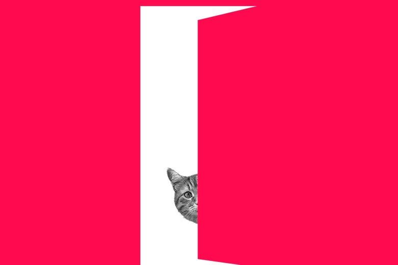A cat peering out an open door.