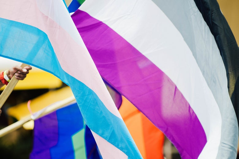 An asexuality pride flag along with other flags.