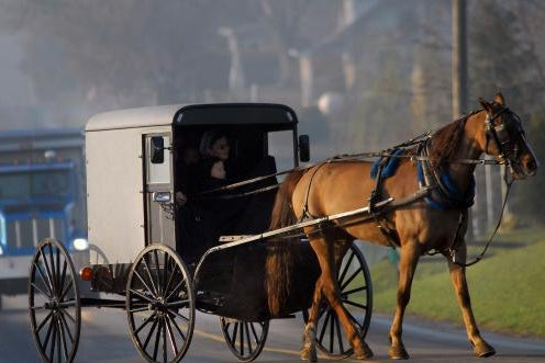 A woman and child are in a horse-drawn buggy followed by a large truck.