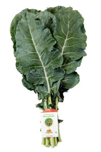 Broccoleaf Wants To Be The New Kale But Are Broccoli Leaves Any Good A Vegetable Review