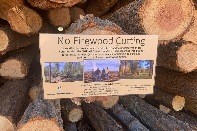 """A National Forest Foundation sign that says """"No Firewood Cutting,"""" placed on a pile of cut logs"""