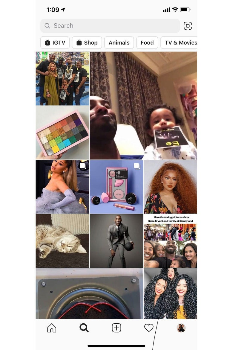 Screenshot of an Instagram Explore feed, featuring photos of Kobe Bryant, other celebrities, and a cat.