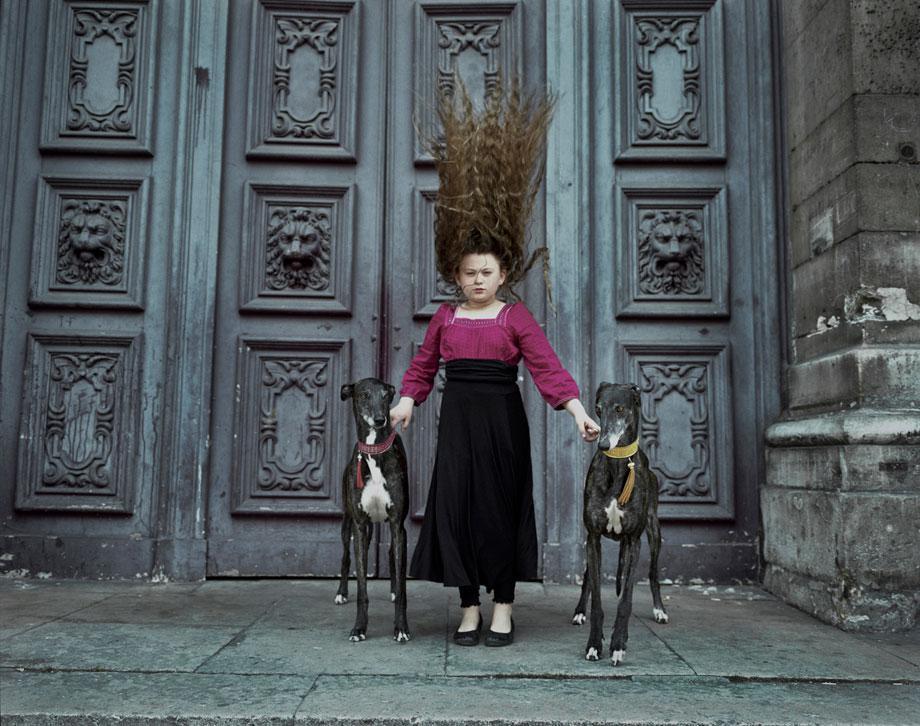 Paris Greyhound Hair