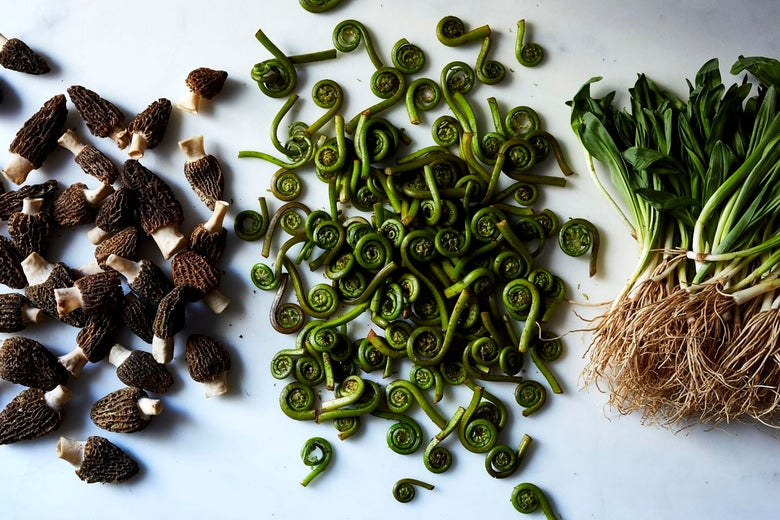 Piles of morels, fiddleheads, and ramps.