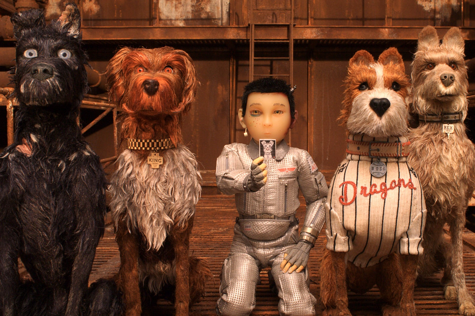 Four dogs and a boy line up in a still from the film.