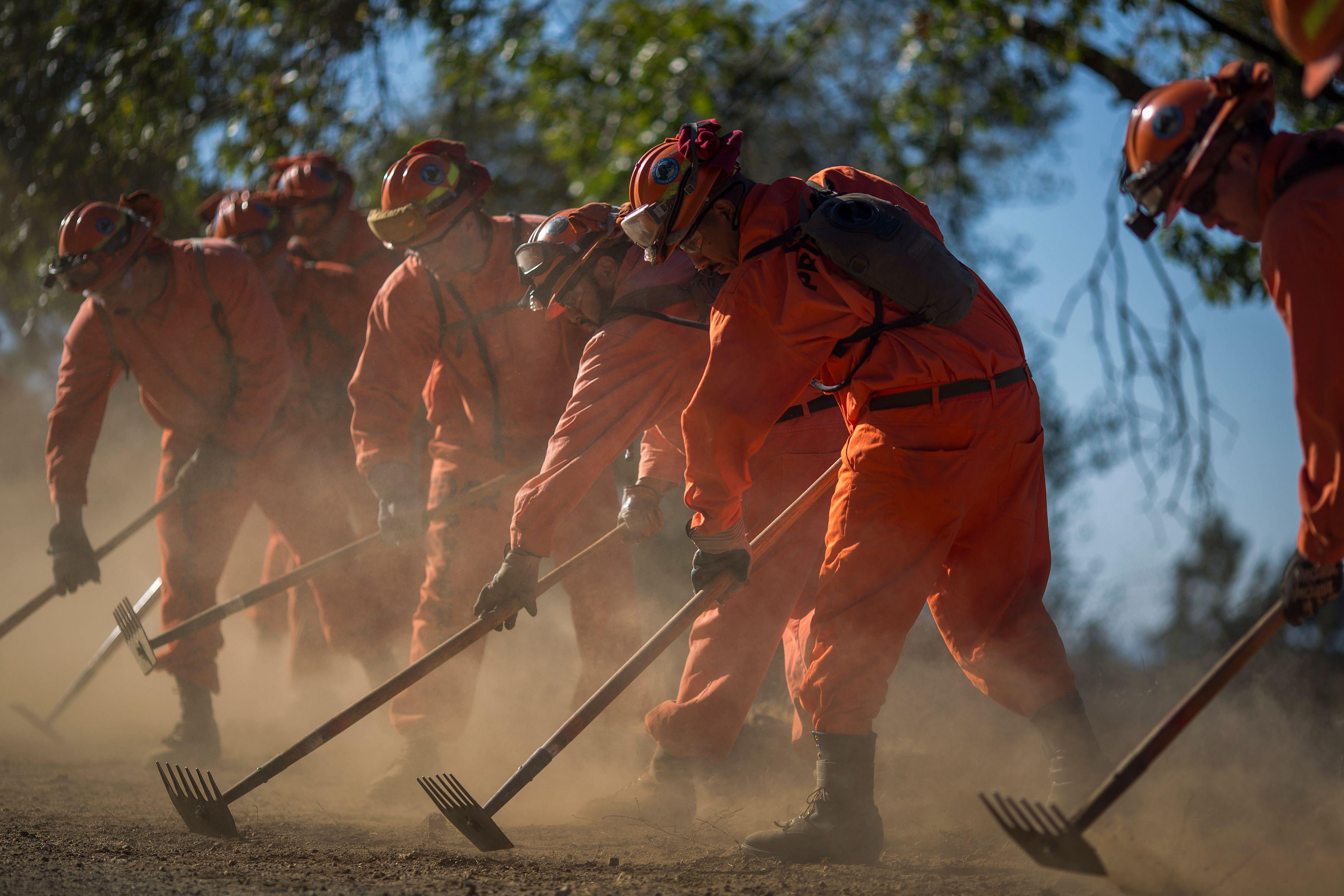 A line of inmate firefighters in jumpsuits strike the ground with hoes.