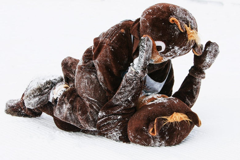 Two bear mascots wrestling in the snow.