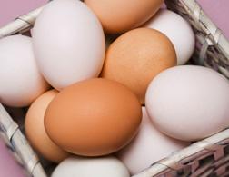 Why do the media love to talk about eggs? Click image to expand.