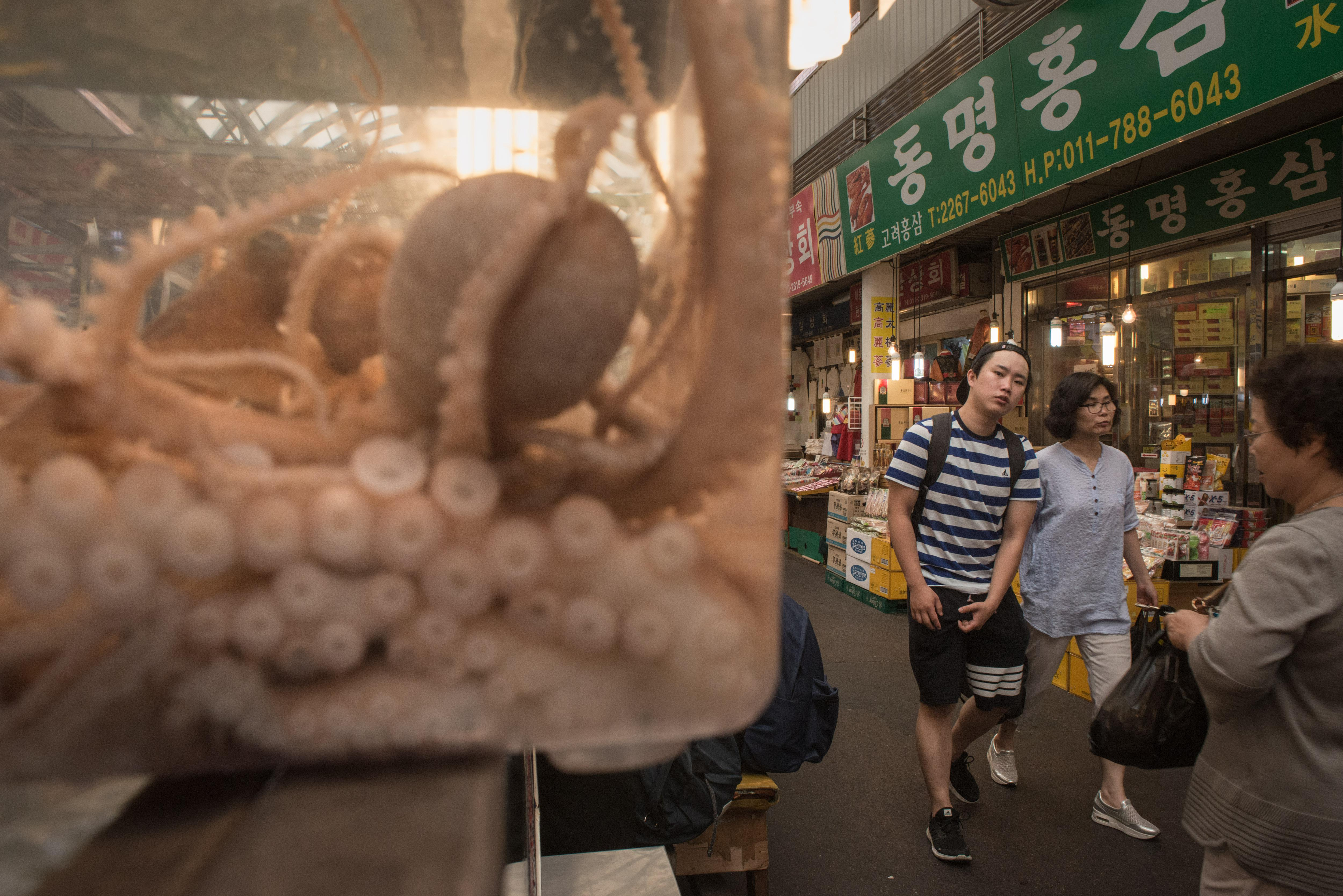 People walk past octopus displayed at a food stall in Gwangjang market in Seoul on June 27, 2017. / AFP PHOTO / Ed Jones        (Photo credit should read ED JONES/AFP/Getty Images)