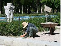 Gardener tends Chehel Sotun (The Palace of Forty Columns), Isfahan. Click image to expand.