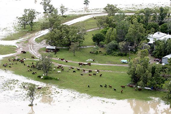 An aerial view of flood affected farm land on February 3, 2012 in Moree, Australia.