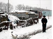 Magomed Surov in Maisky Settlement
