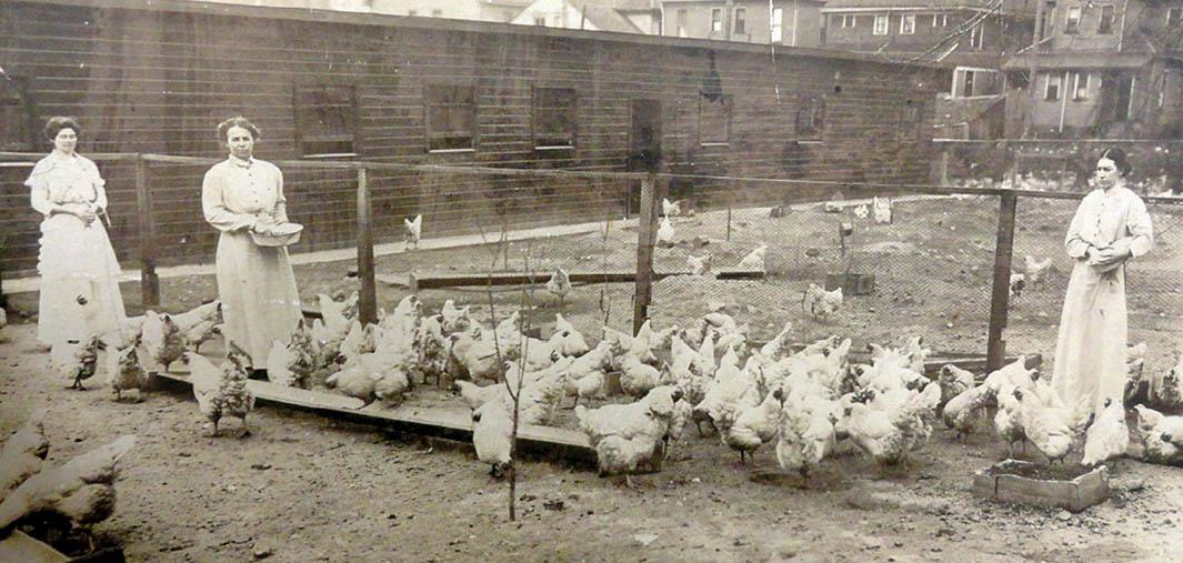 Women feeding chickens at the Indiana Women's Prison.,Women feeding chickens at the Indiana Women's Prison.