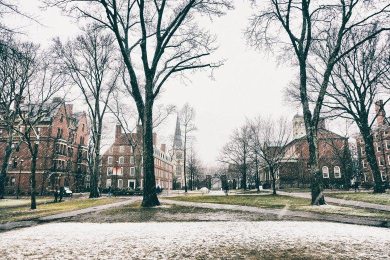 Stock image of Harvard University