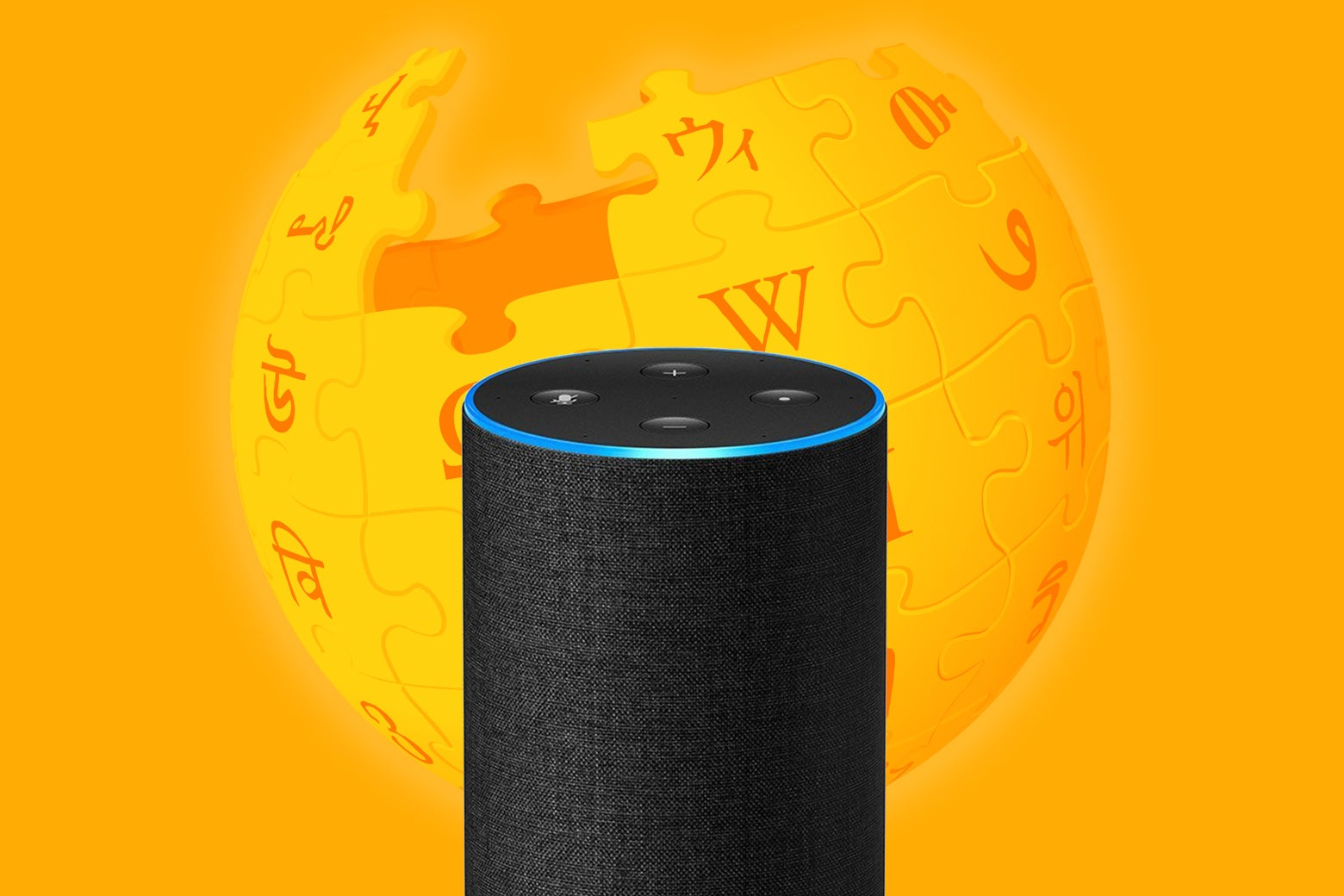 An Amazon Echo device, with the Wikipedia globe logo in the background.