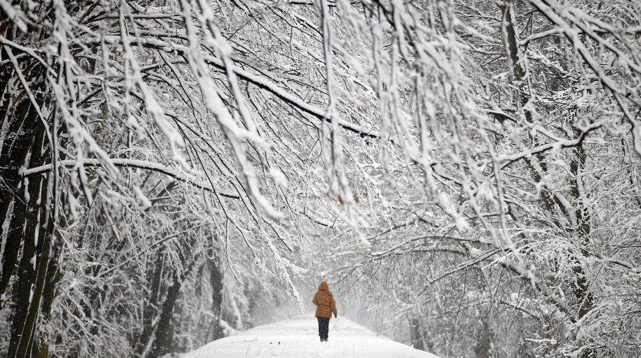 A woman walks through snow covered Mlociny Park following heavy snow fall in Warsaw, Poland on April 1, 2013.
