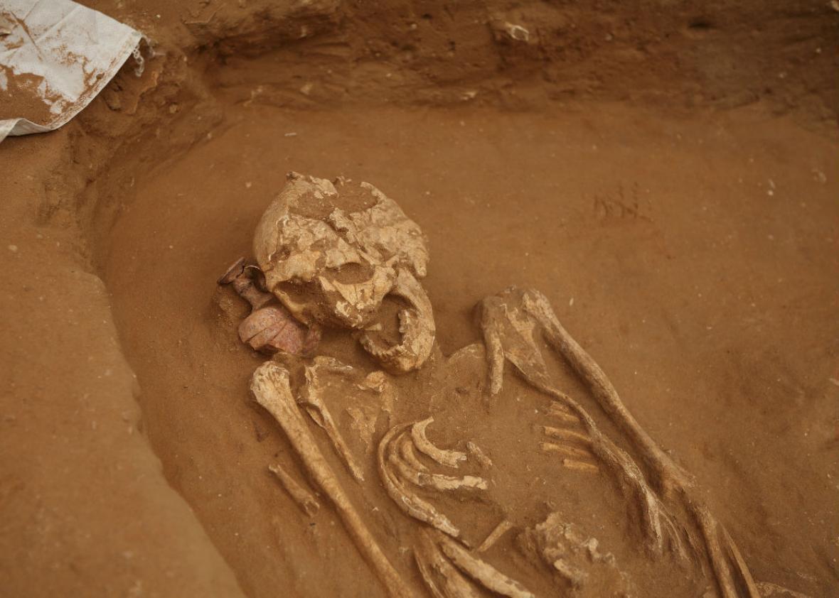 Archaeologist Arthur Demarest on civilization decline.