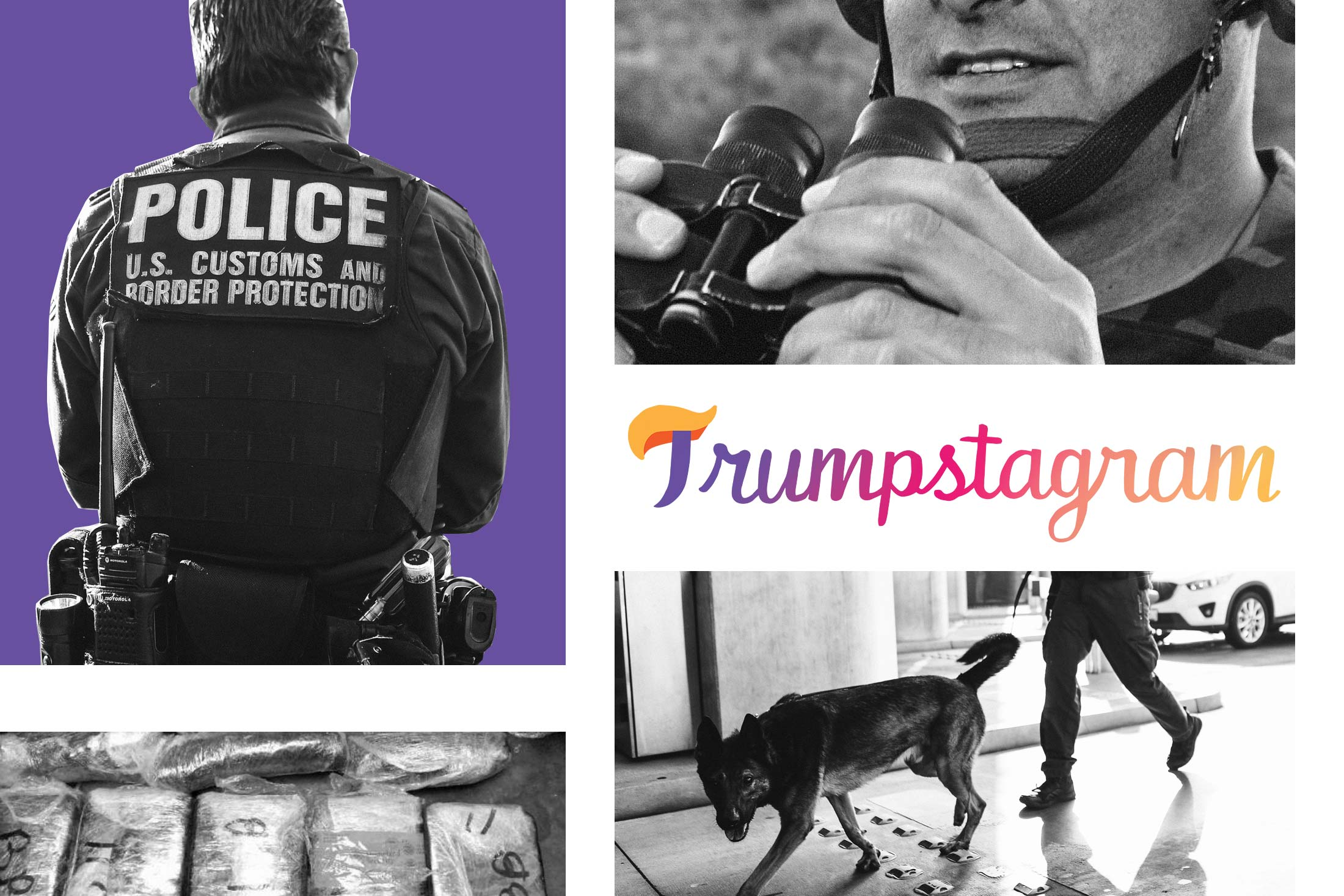Grid of images of CBP agents, inspection canines, and seized drugs.