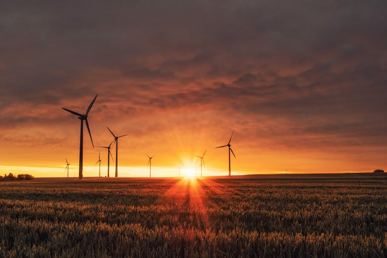 Wind turbines on a field against a sunrise or sunset.