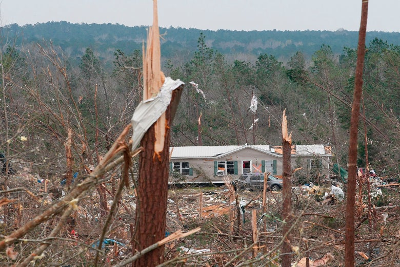 Wrecked home and surrounding woodlands after the tornado. Trees have been knocked over, and debris is scattered all over the scene.