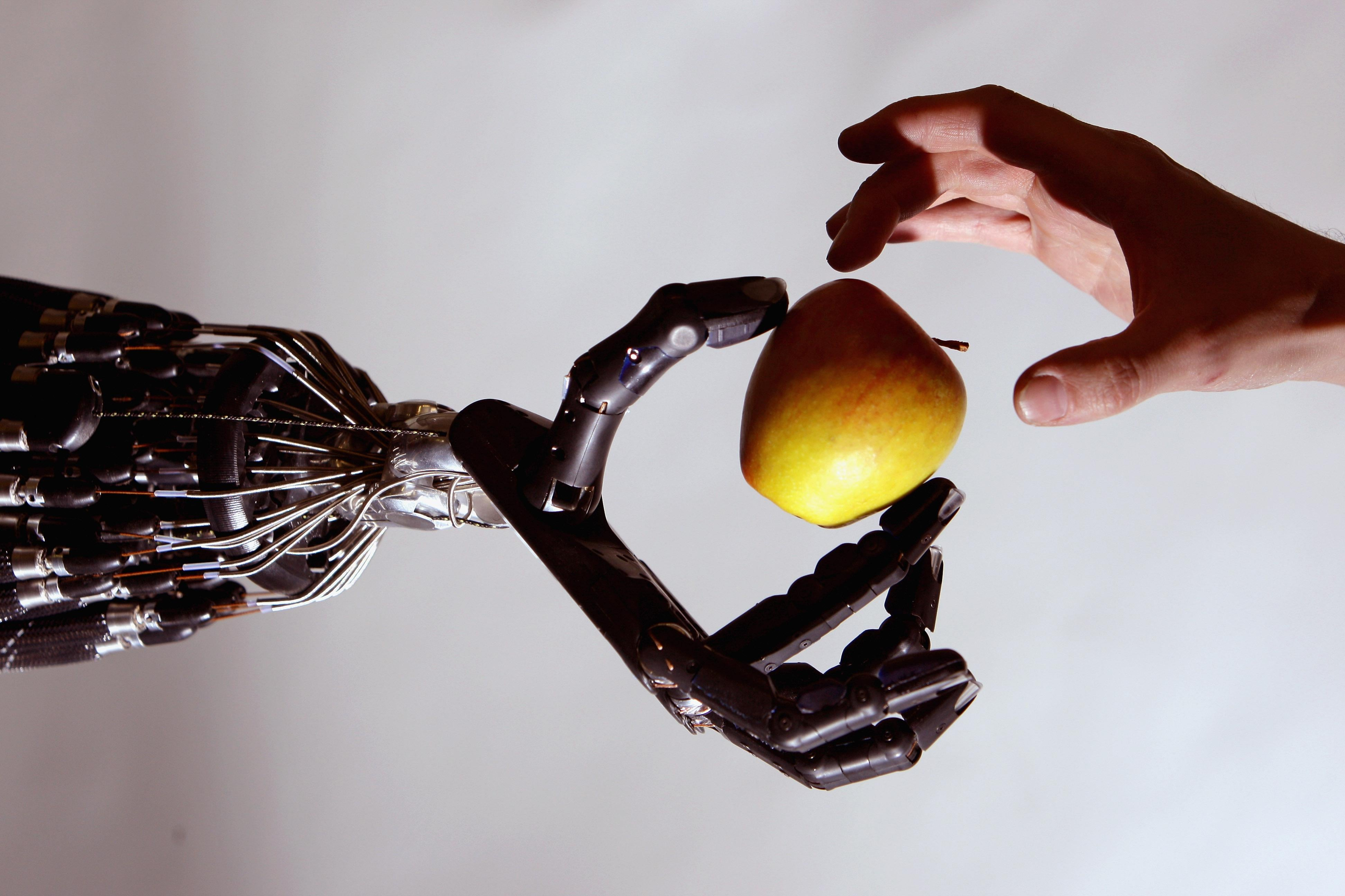 The Shadow Robot company's dextrous hand robot holds an apple at a robotics event in London.