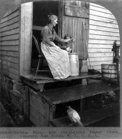 Churning butter with old-fashioned dasher churn, creamery, East Aurora, NY, 1905.